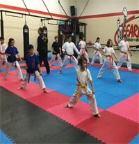 taekwondo classes fearless placentia